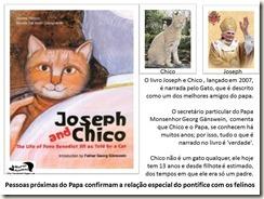 papa_ama_gatos (8)[7][3]