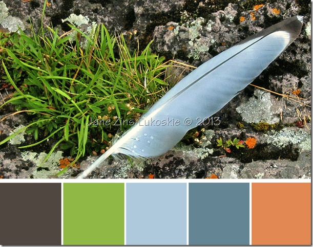 feather color swatch copy