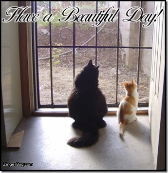 have_a_beautiful_day_cats_in_doorway