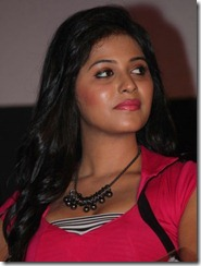 Actress Anjali at Settai Audio Launch Photos