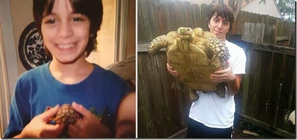 Antes e Depois de Animais de Estimação (6)