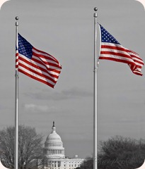 flags_at_capital