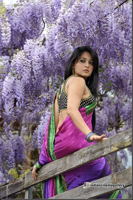 Anushka Shetty latest stills 25_01_2013