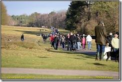 Bradgate Park D800  01-01-2013 12-37-55