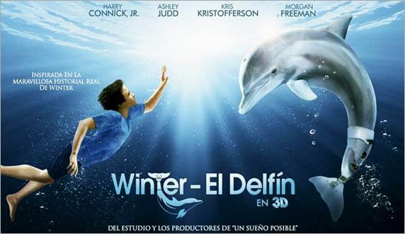 winter-el-delfin
