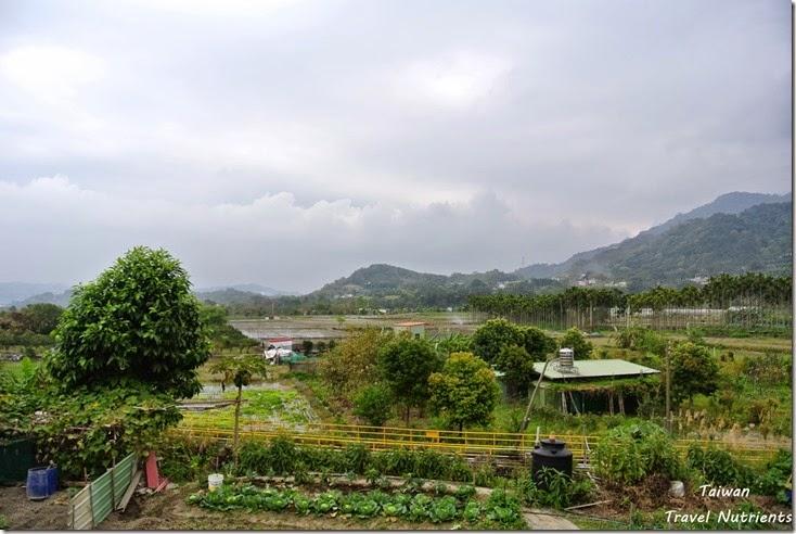 竹東軟橋彩繪村 (37)