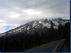 Mt. Rainier (23)