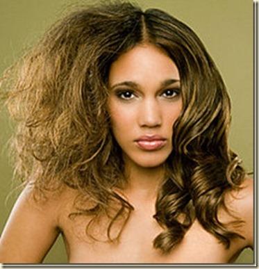 Remedios Caseros para el cabello con Frizz2