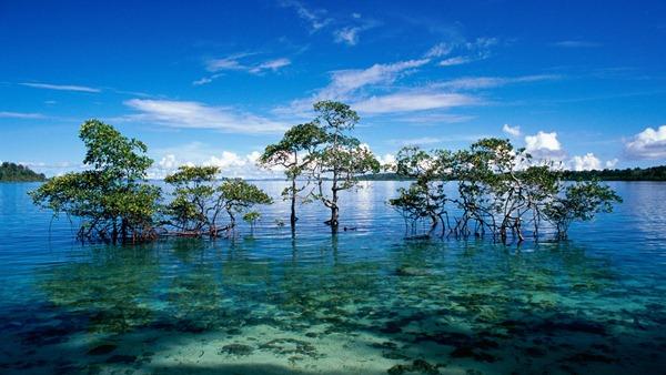 محمية بوبيتورا الطبيعية