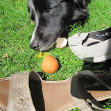 Tennisschuhe 048.jpg