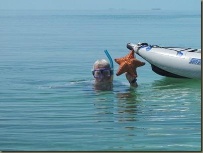 kayaking around sunshine key, starfish