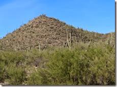 around Tucson 004