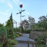 roppongi hills roof park in Tokyo, Tokyo, Japan