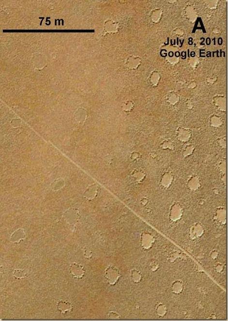 Mystérieux cercles de fées en Namibie