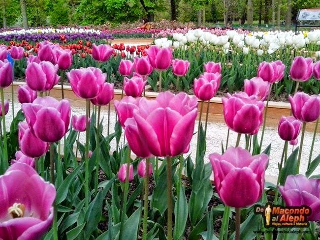 Parque Floral de Paris Bosque de Vincennes 15