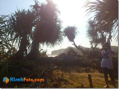 Tebing pantai watu kodok Drini_04