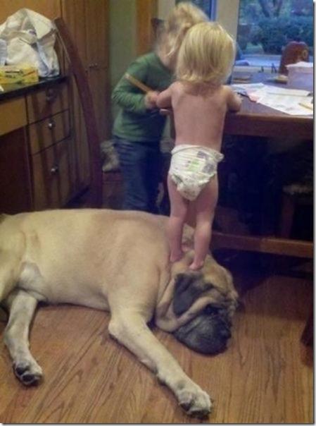 dogs-kids-best-friend-25