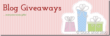 Blog Giveaways-024011