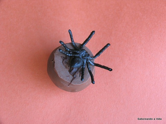 Aranhas Bombons2