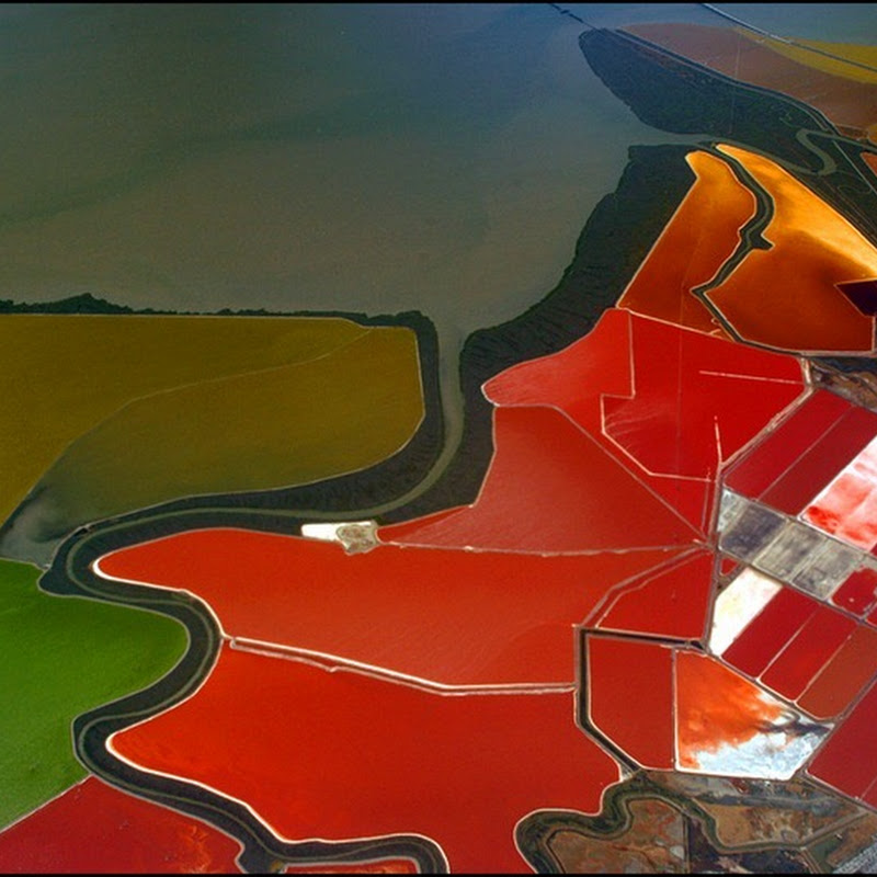 Multicolored Salt Ponds at San Francisco Bay