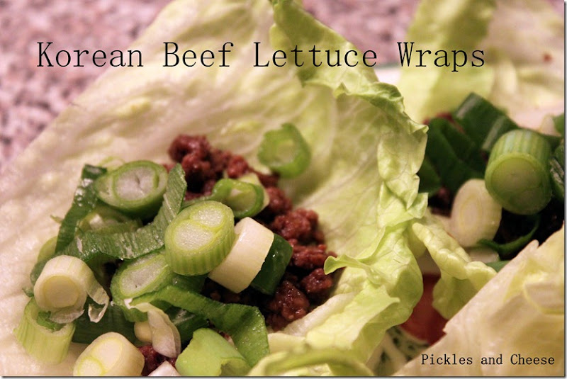 Korean Beef Lettuce Wraps 007