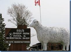 8068a Ontario Trans-Canada Highway 17 - sheep statue