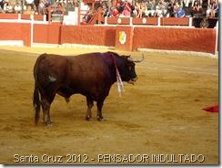 Santa Cruz 2012 - PENSADOR INDULTADO
