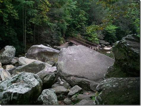 Whitewater falls bridge and boulders