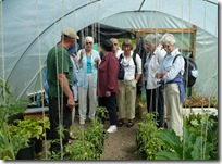 polytunnel discussion
