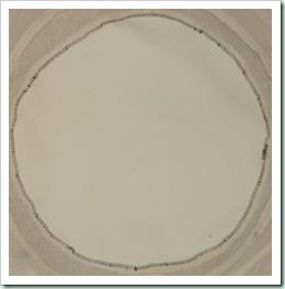 DSCF5341