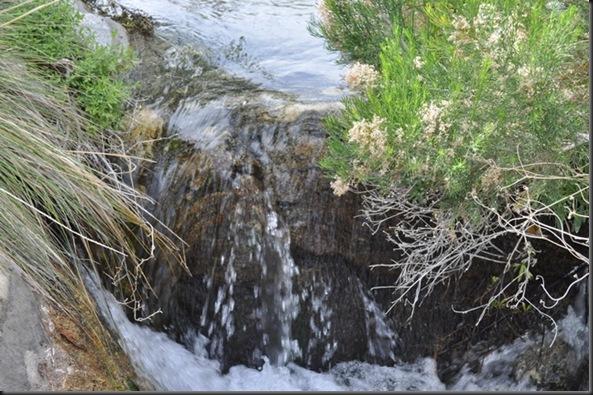 04-24-12 3 White Water 33