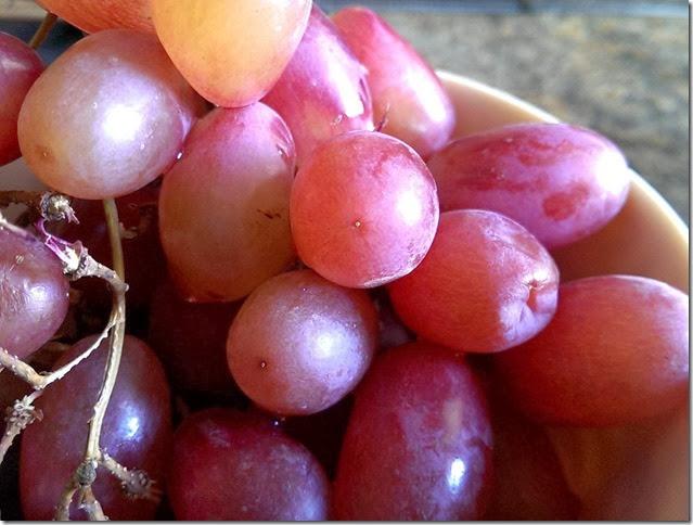 grapes-public-domain-pictures-1 (2297)