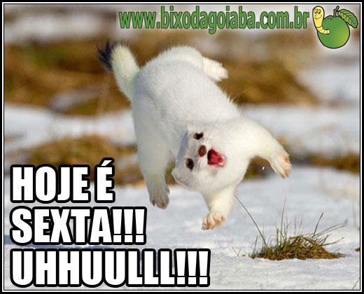 Hoje é sexta! Uhhuuullll!!!!!