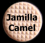 Jamilla Camel - Makeup for Professional Asian Women
