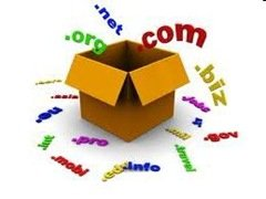 domain pribadi