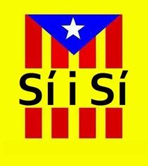 Bandièra Catalonha pel referèndum 09N14