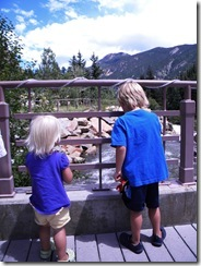 Colorado Summer 037