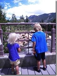 Colorado Summer 037