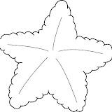 STARFISH3_BW_thumb.jpg