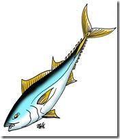 peces clipart blogcolorear (32)