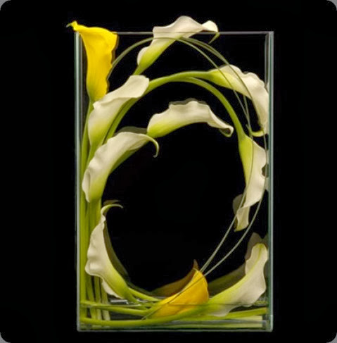 callas Window-Box ovando
