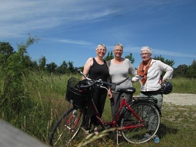 Gotland 2012 209