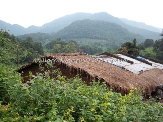 village niyamgiri