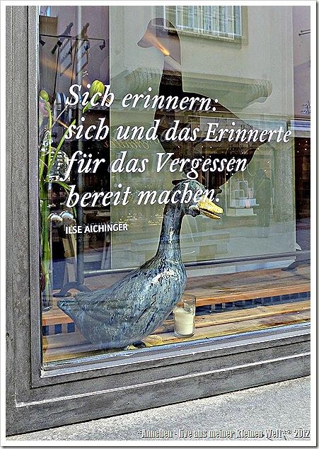 TinasPicStory_SalzburgSchaufenster