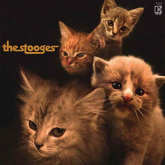 The Kitten Covers08