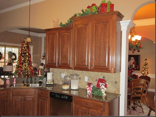 Christmas 2011 265