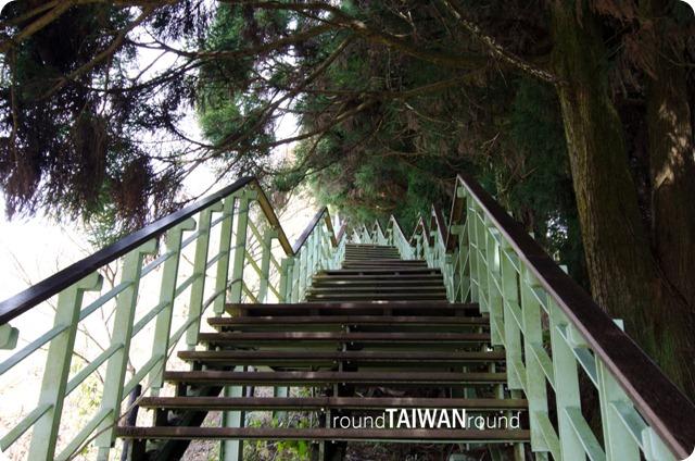 499 steps