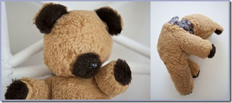 Injured Teddy-before