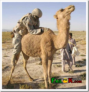 Funny Fail - Soldier riding camel.