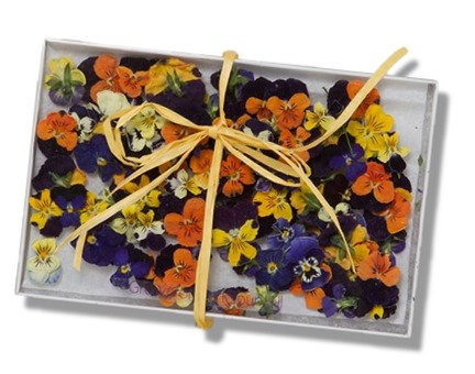 Edible Violas from Terrain